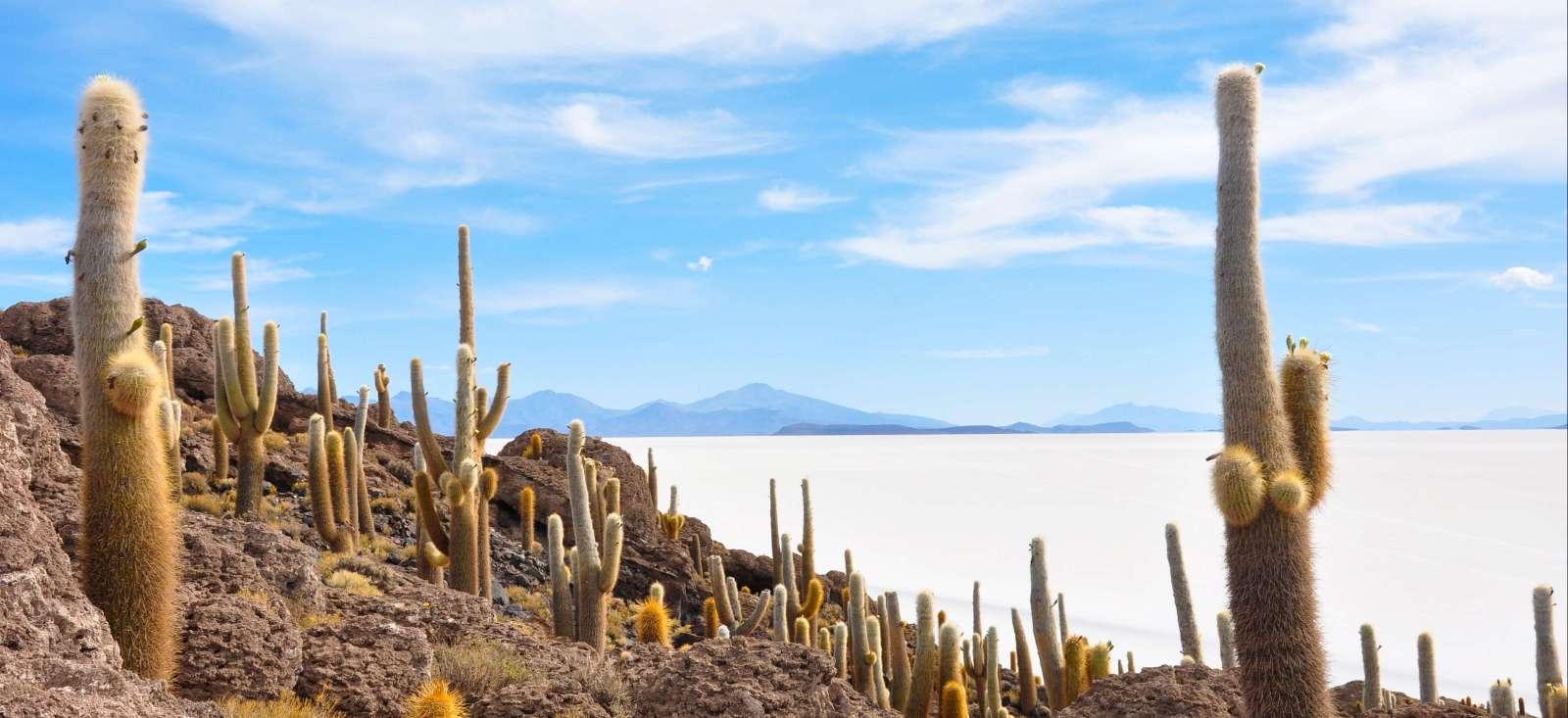 Voyage à pied : Du Salar d\'Uyuni à Iguazu