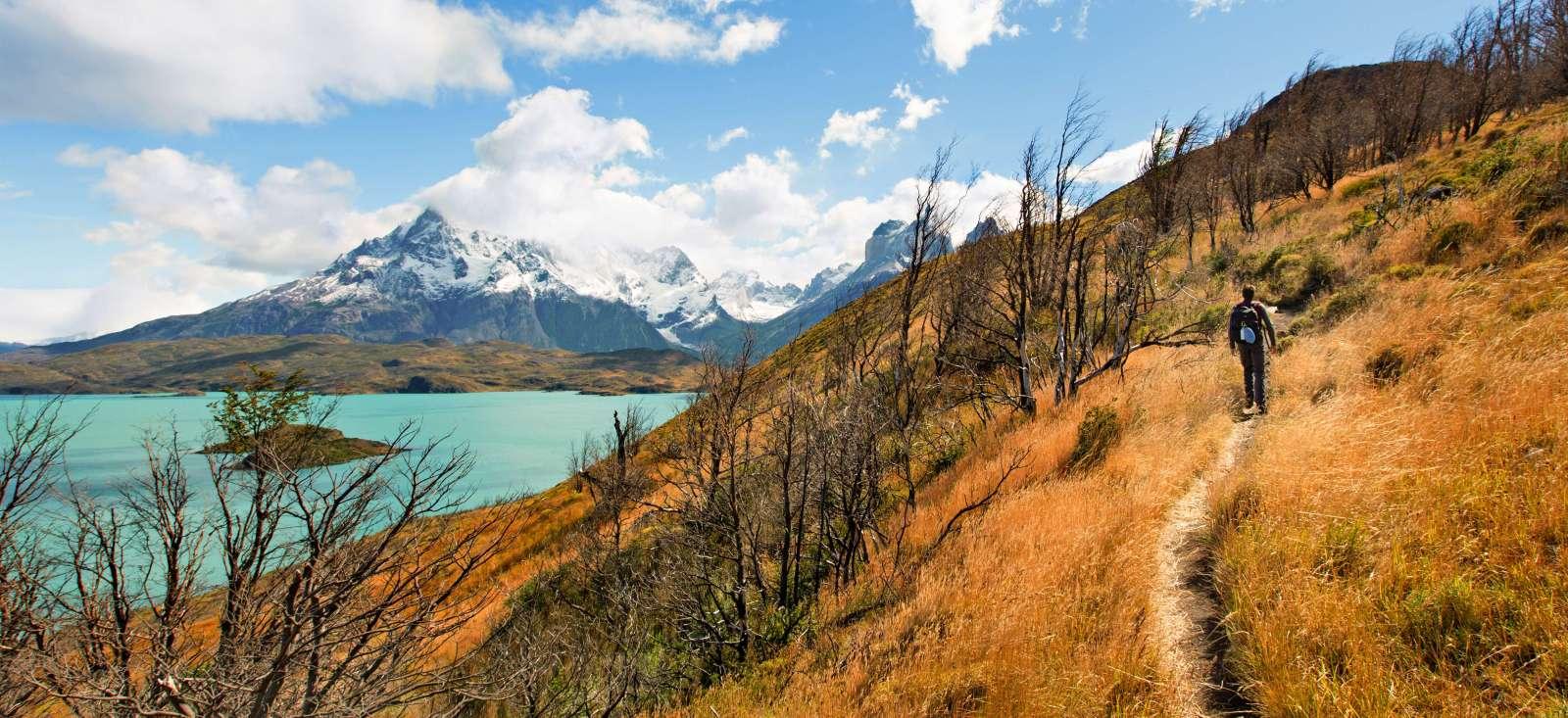 Voyage à pied : Argentine & Chili, rendez-vous en Patagonie