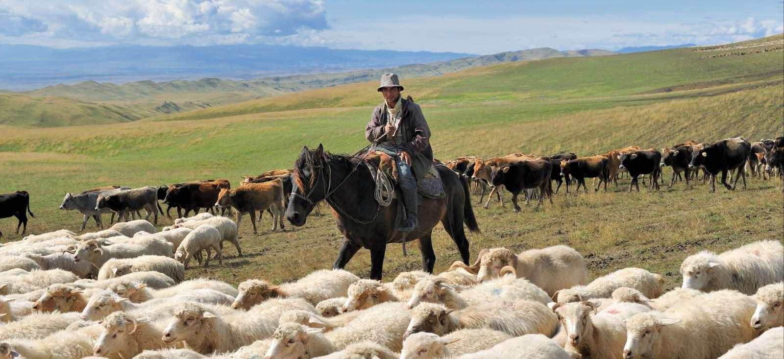 Voyage à pied : Absolut Caucase