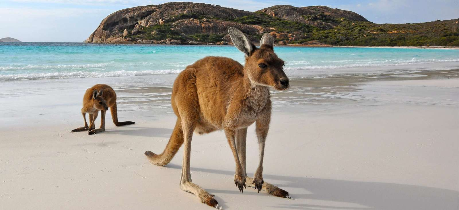 Voyage à pied :  L\'Australie, de Perth à Adélaïde