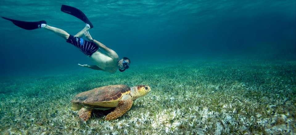 Belize sites de rencontre