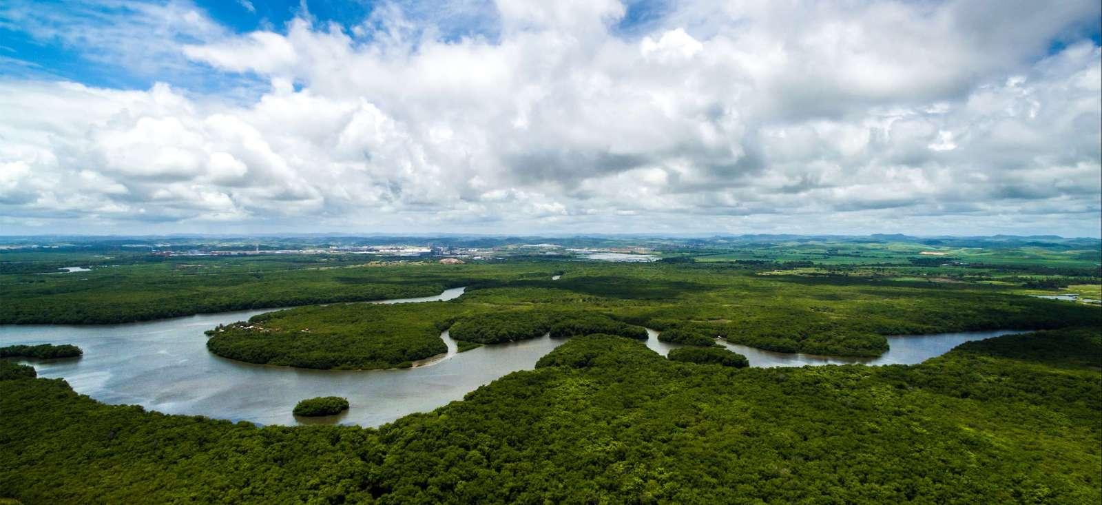 Voyage à pied : Croisière au fil de l\'Amazone