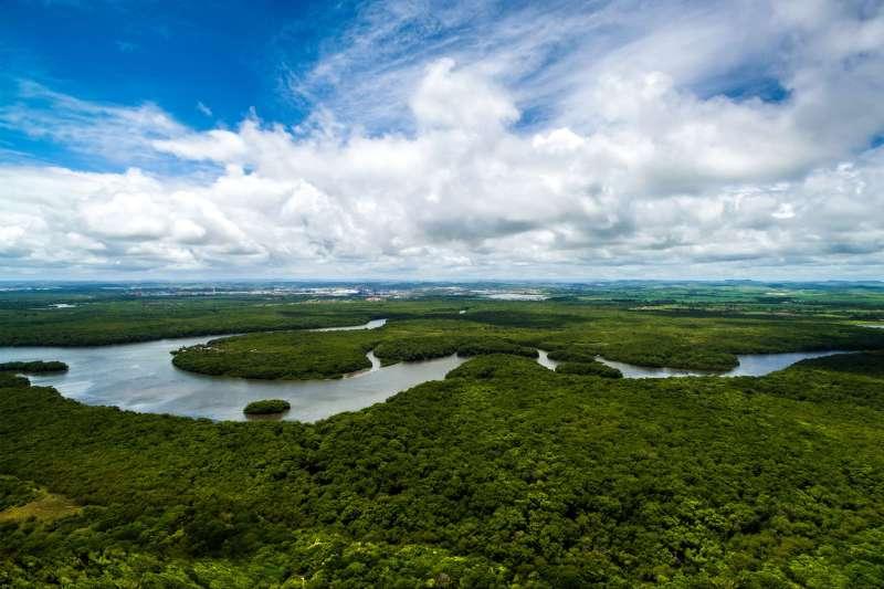 Voyage sur l'eau : Croisière au fil de l\'Amazone