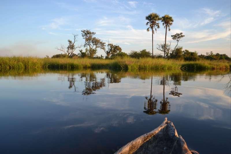 Voyage à pied : Botswana : Paradis des animaux !