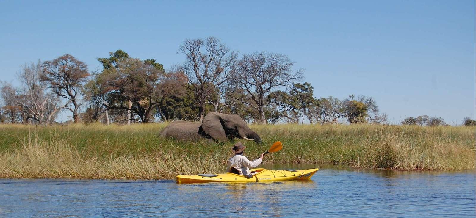Voyage sur l'eau Botswana : Grande traversée de l\'Okavango en kayak