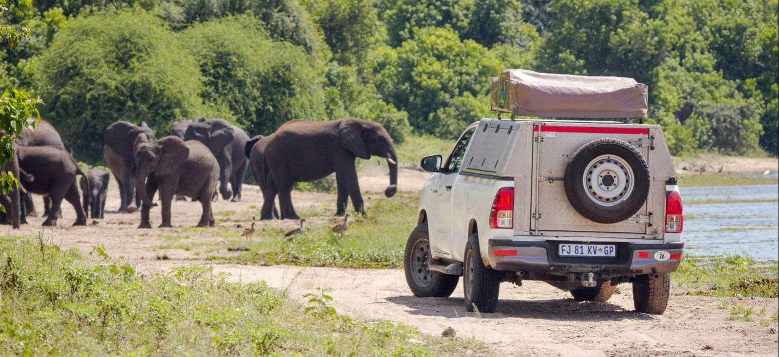 Voyage en véhicule : Randos, 4x4 & Rhinos dans le grand sud