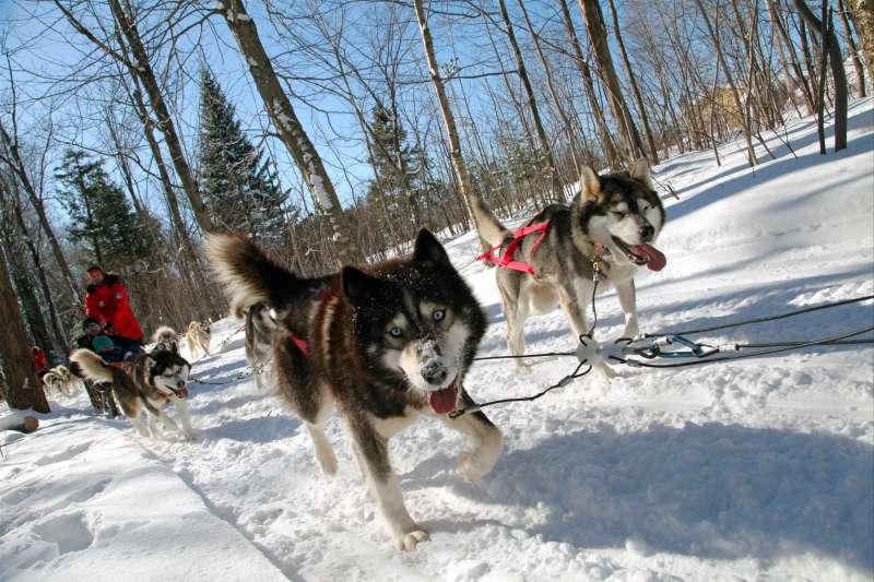 Voyage à la neige : Attache ta tuque !