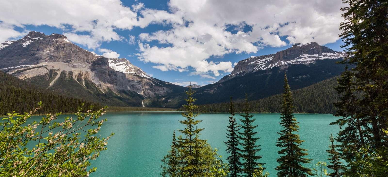 Voyage à pied : L\'ouest Canadien en grandeur nature