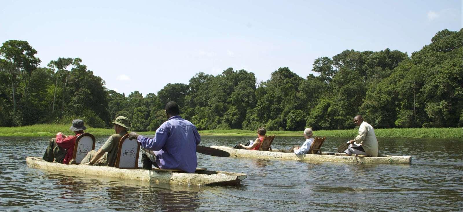 Voyage à pied : Pygmées et réserve du Dja