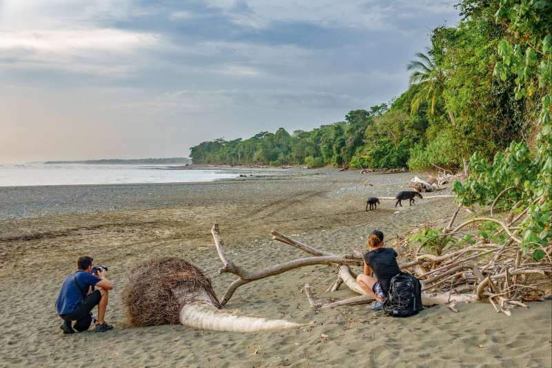 Voyage en véhicule : Trésors du Costa Rica en famille