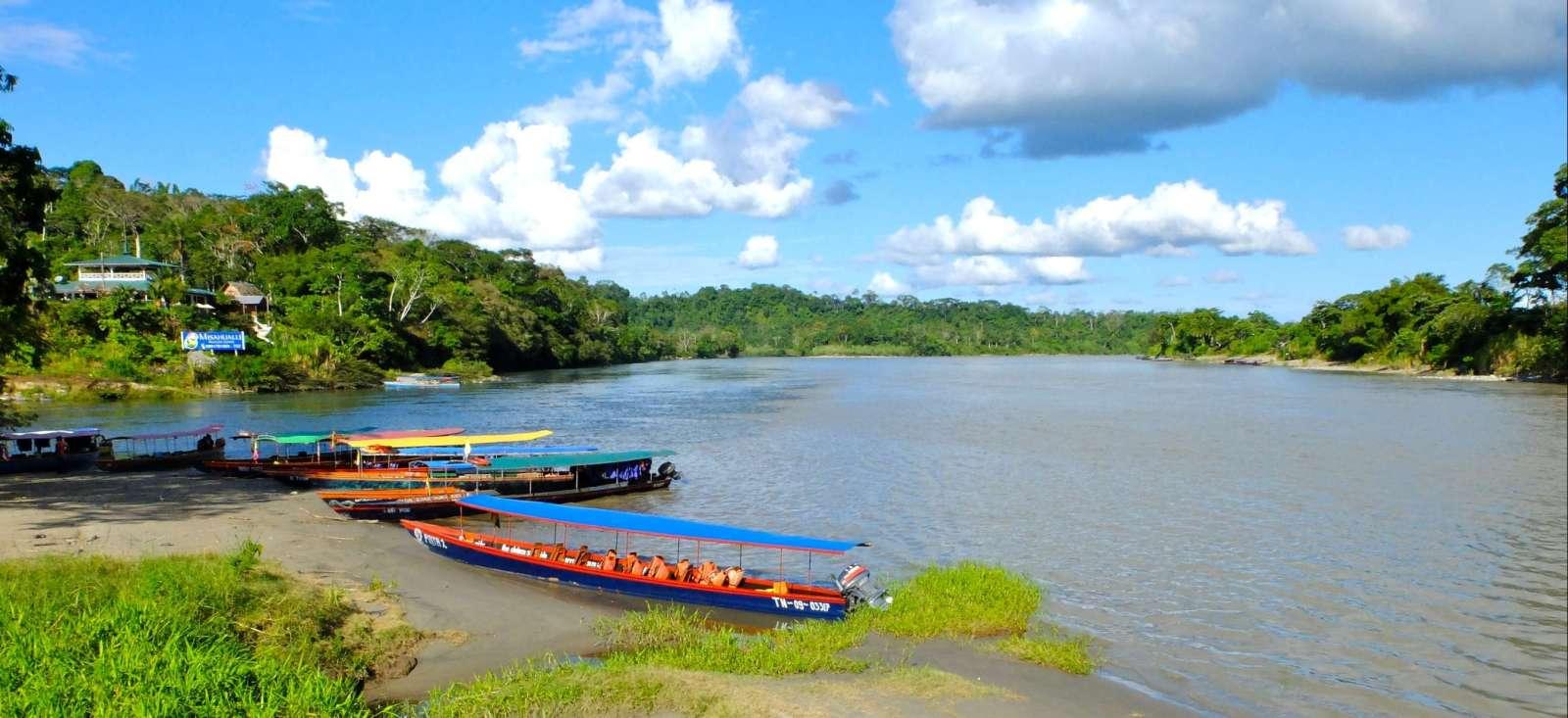 Voyage à pied : Des Andes à l\'Amazonie