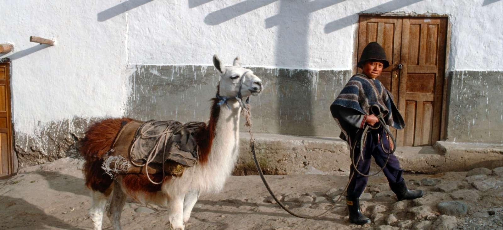 Voyage à pied : Au pays du lama qui rit