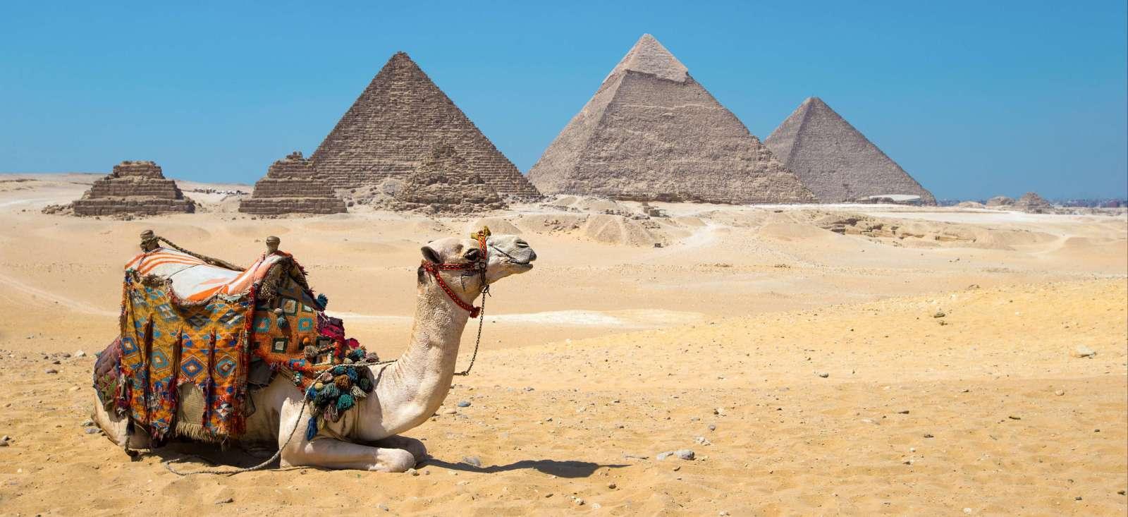 Voyage en véhicule : Un sandal pour le Nil et  train pour le Caire