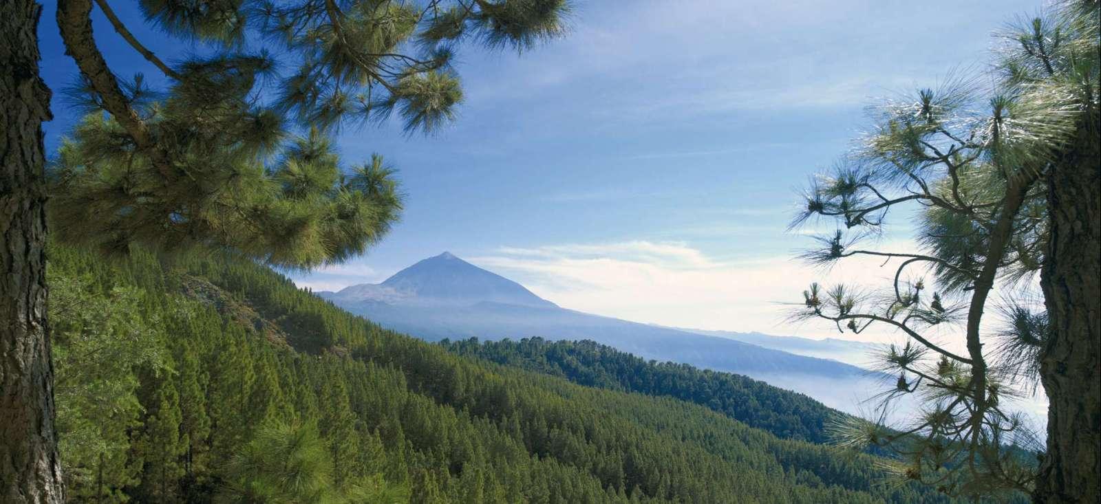 Voyage à pied : Ténérife et la Gomera ...