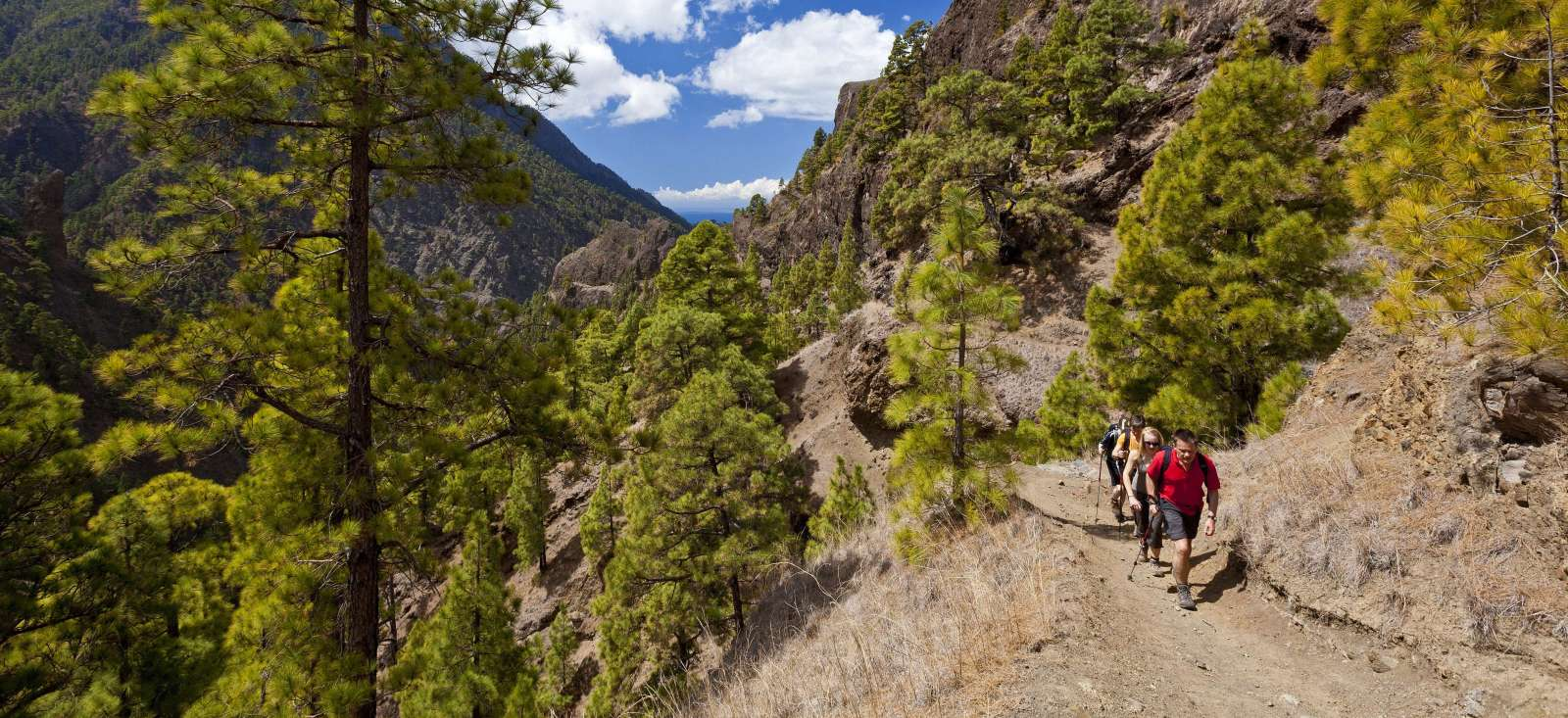 Voyage à pied : Sentiers et reliefs de la Palma