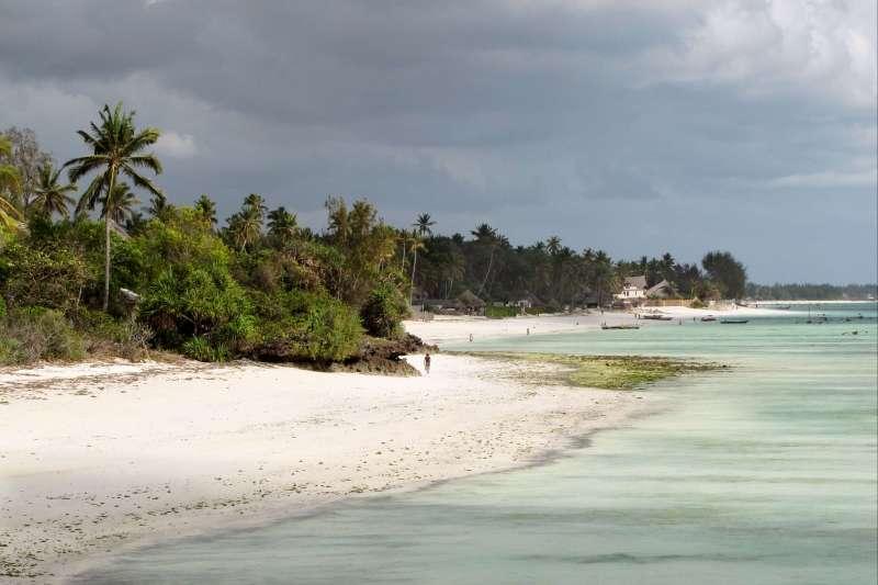 Voyage à pied : Des hauts plateaux d\'Abyssinie à Zanzibar