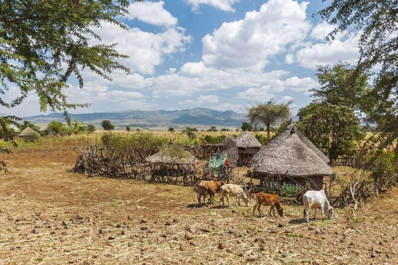 Voyage à pied : Trek en territoire surma et chakchako !