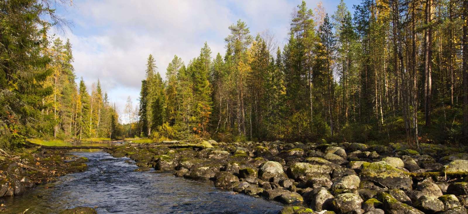 Voyage à la neige : Finlande : Au cœur de l\'été arctique finlandais