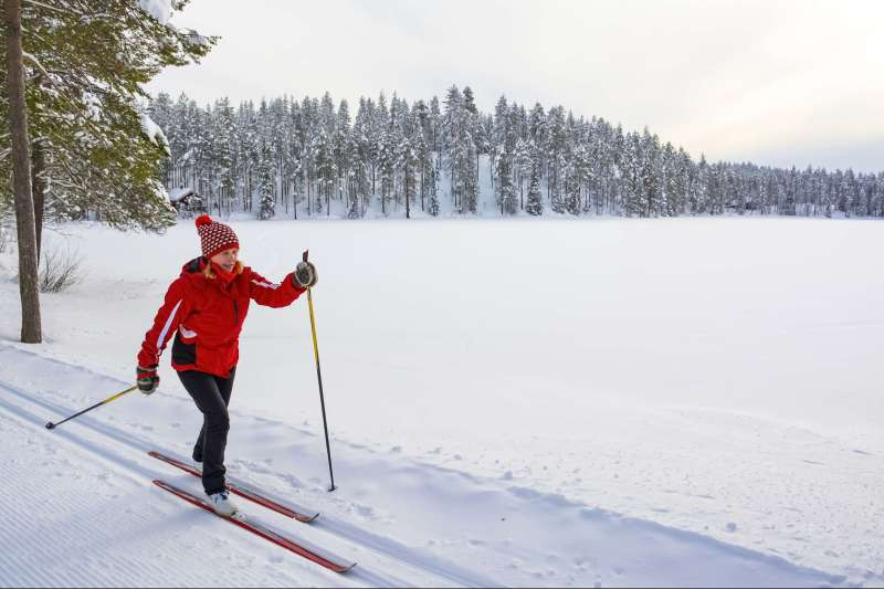 Image Ski nordique et pulka en Laponie finlandaise