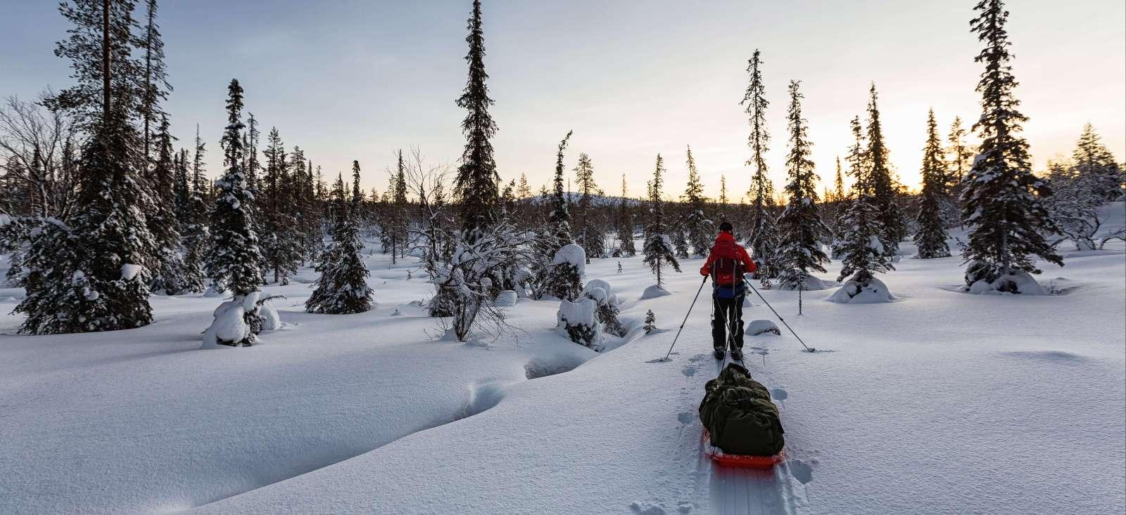 Voyage en raquette : Ski nordique et pulka en Laponie finlandaise