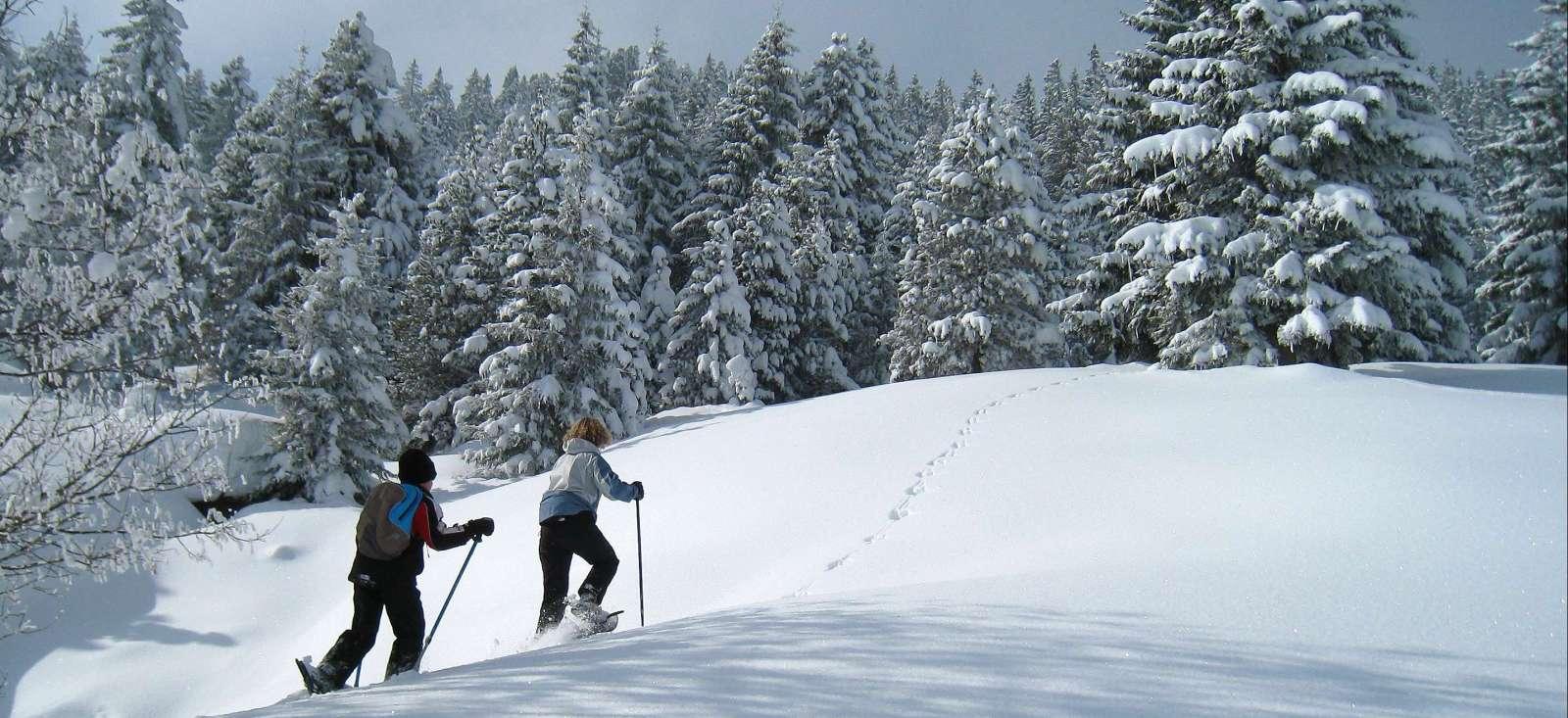 Voyage à pied : Week-end trappeur dans le Jura