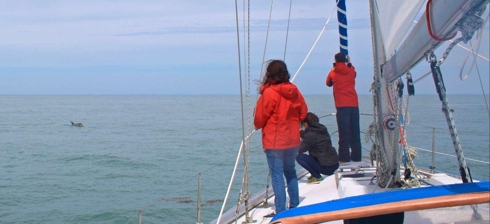 Voyage sur l'eau : Cap sur Jersey en voilier !
