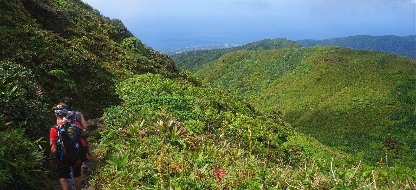 Voyage sur l'eau : Best of Guadeloupe