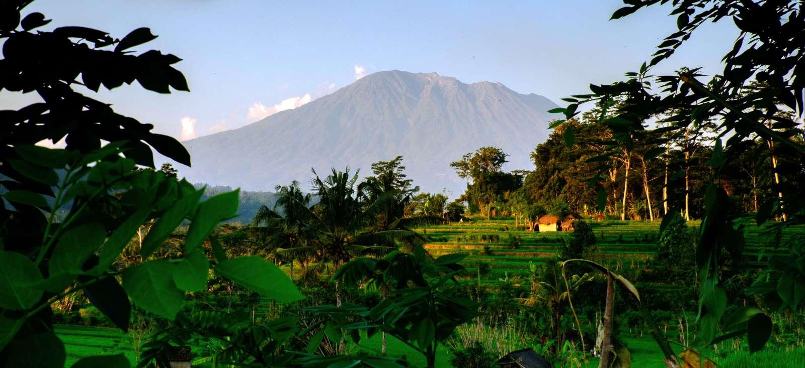 Voyage à pied : Mon petit trip à Bali