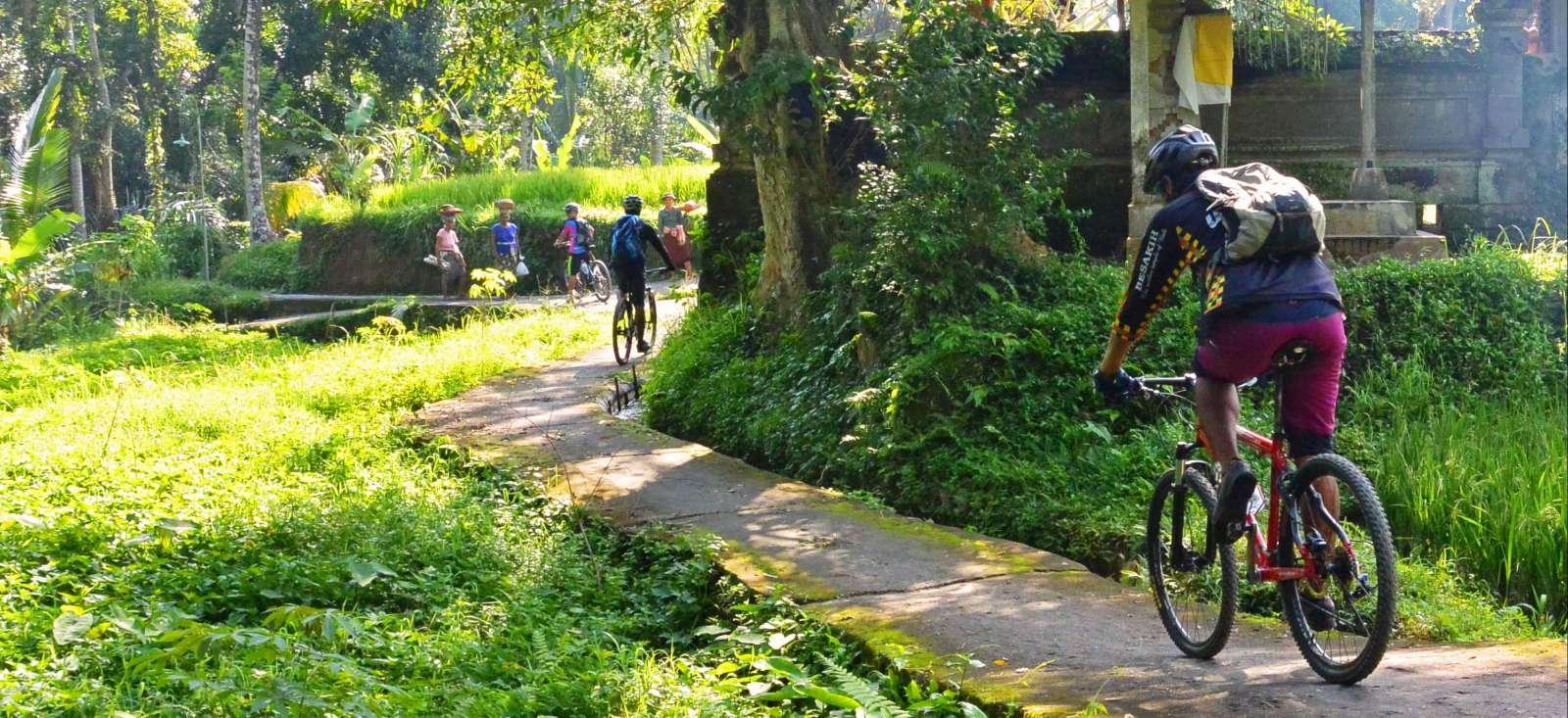 Voyage en véhicule : Belle échappée sur l\'île de Bali