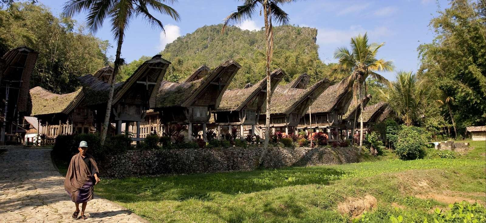 Voyage à pied Indonésie : Selamat pagi Sulawesi!