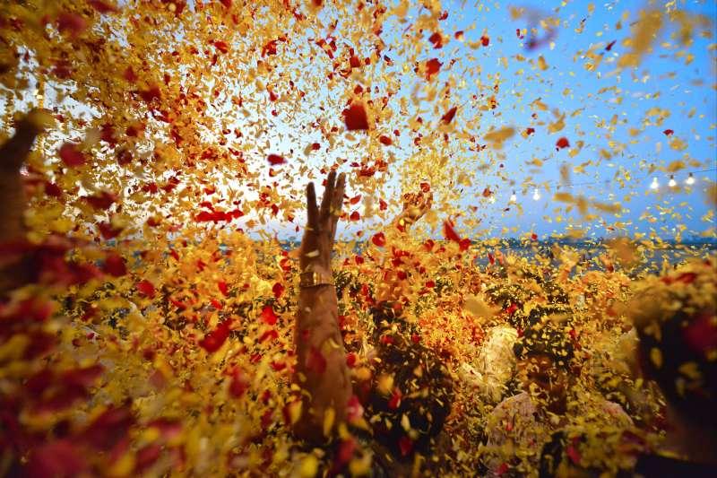 Voyage avec des animaux : Fascinant Rajasthan et festival de Holi