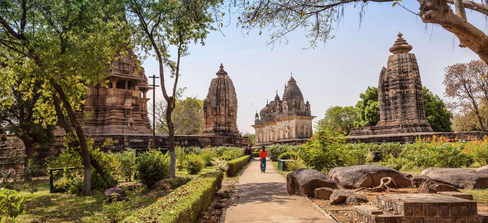 Voyage avec des animaux : Inde : Rajasthan et trésors du Madya Pradesh