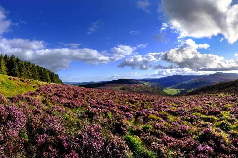 Image Dublin et le Parc National du Wicklow