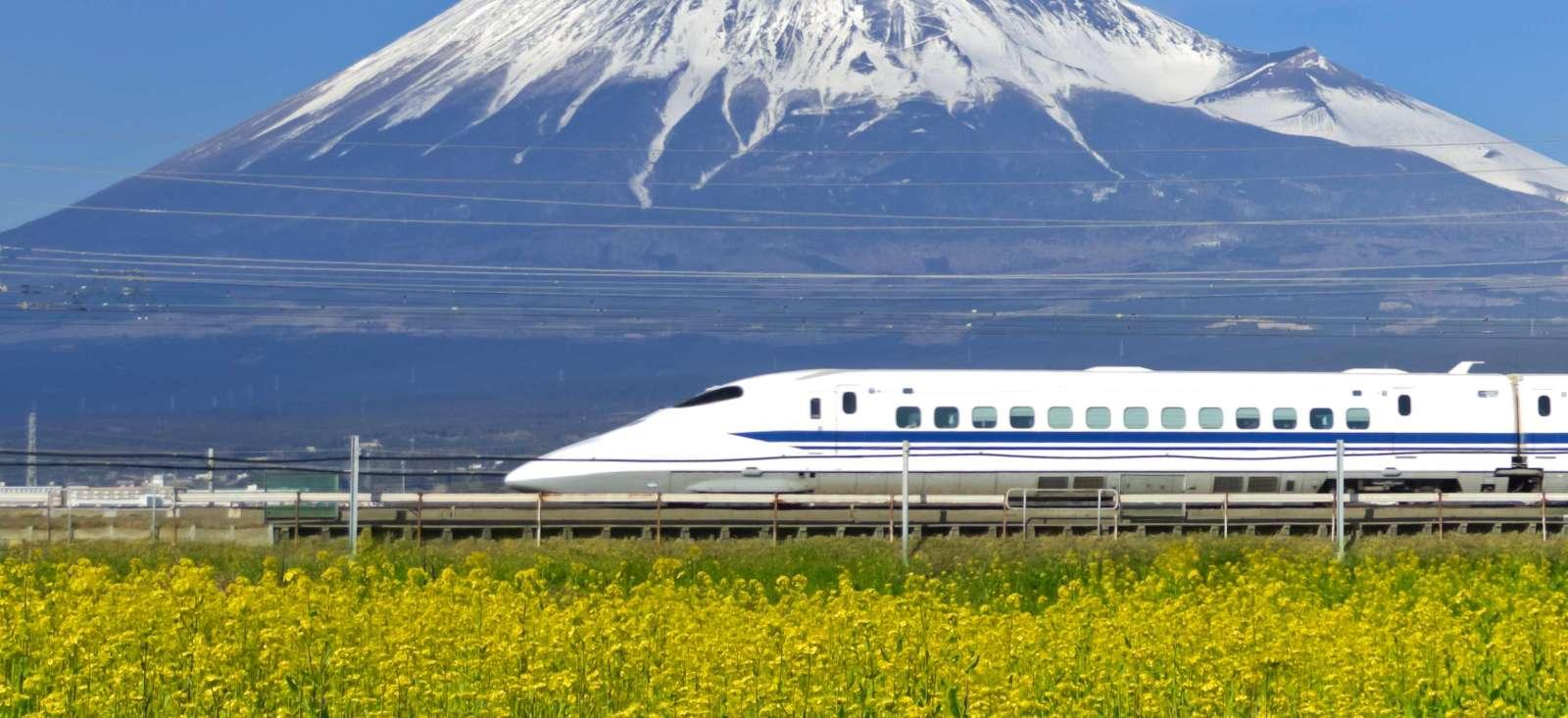 Voyage à pied : Mont Fuji, Mont Koya, Mon amour