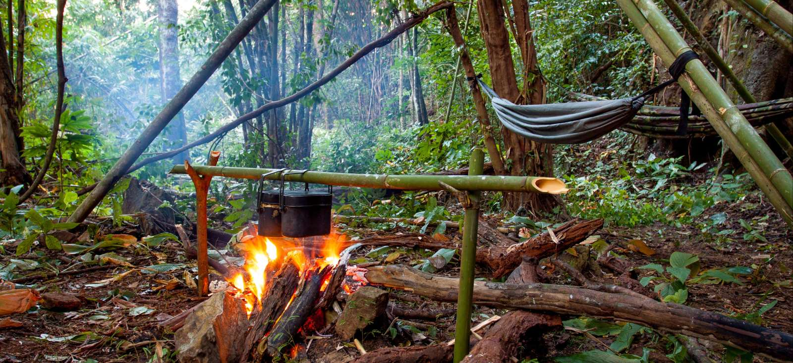 Voyage à thème : En pure immersion dans la jungle Khmer !