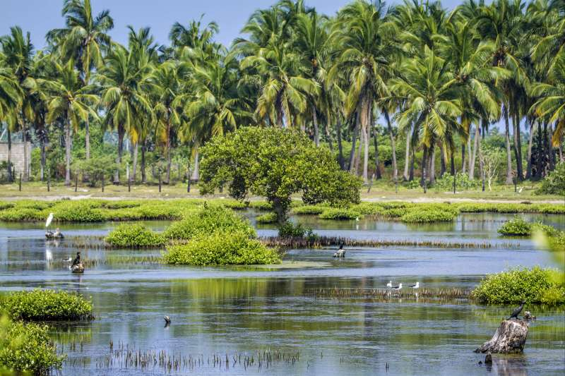 Voyage avec des animaux : One Two Sri... Lanka ! L\'aventure en famille