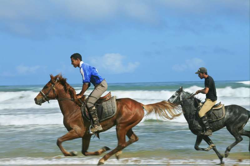 A grand galop sur l'Atlantique
