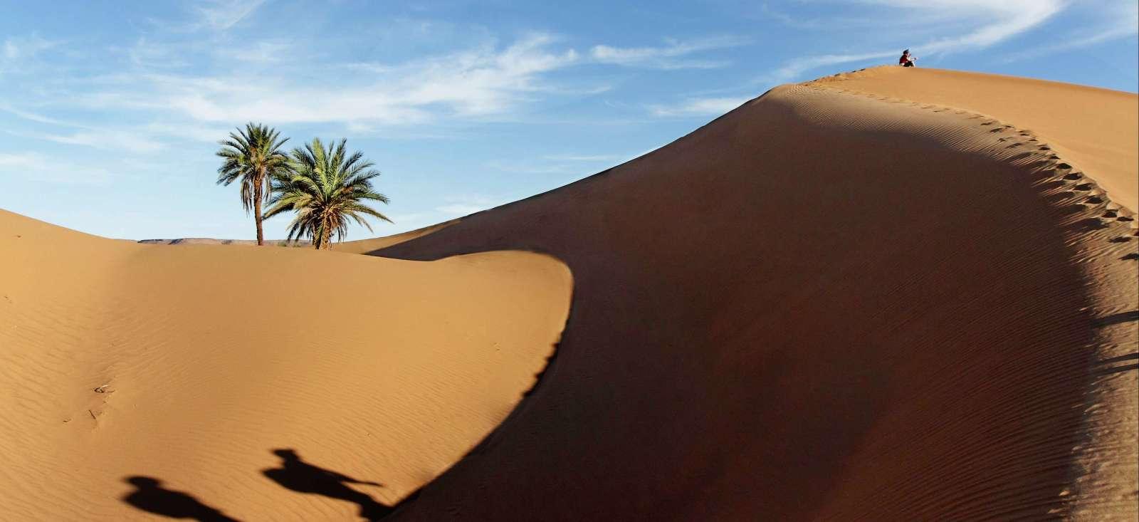Voyage avec des animaux : Maroc :  L\'appel du Sahara!