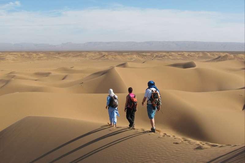 Voyage avec des animaux : Maroc : L\'or du Grand Sud !
