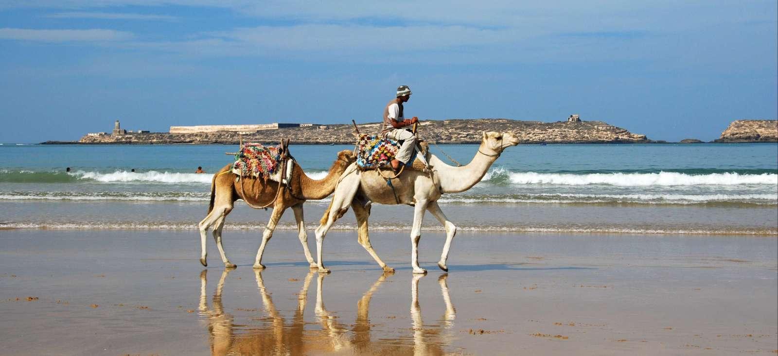 Voyage à pied : Maroc : Vent du large (côte Atlantique)