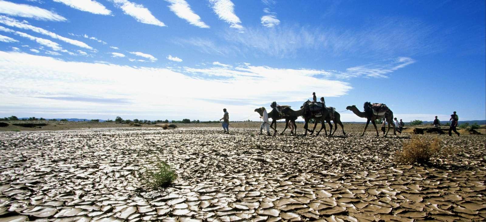 Voyage à pied : Maroc : Une caravane pour Tazzarine