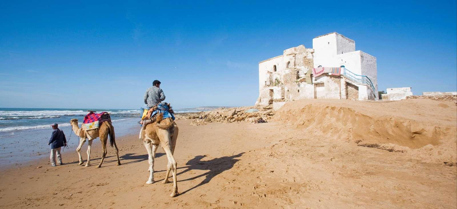 Voyage à pied : Escapade chamelière sur la côte atlantique