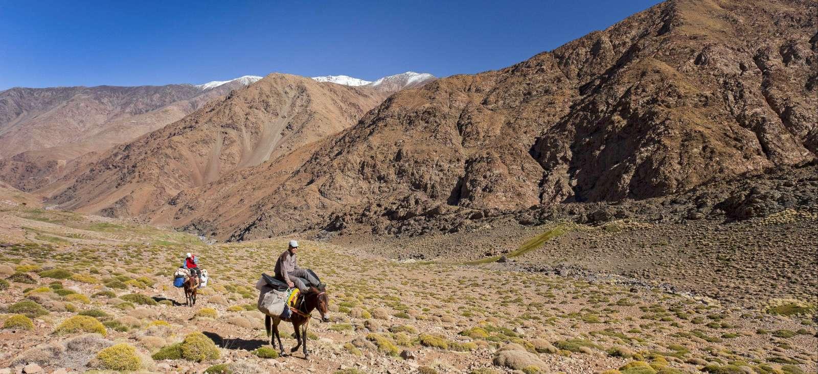 Voyage à pied : L\'Atlas, la mule et le carnet de route