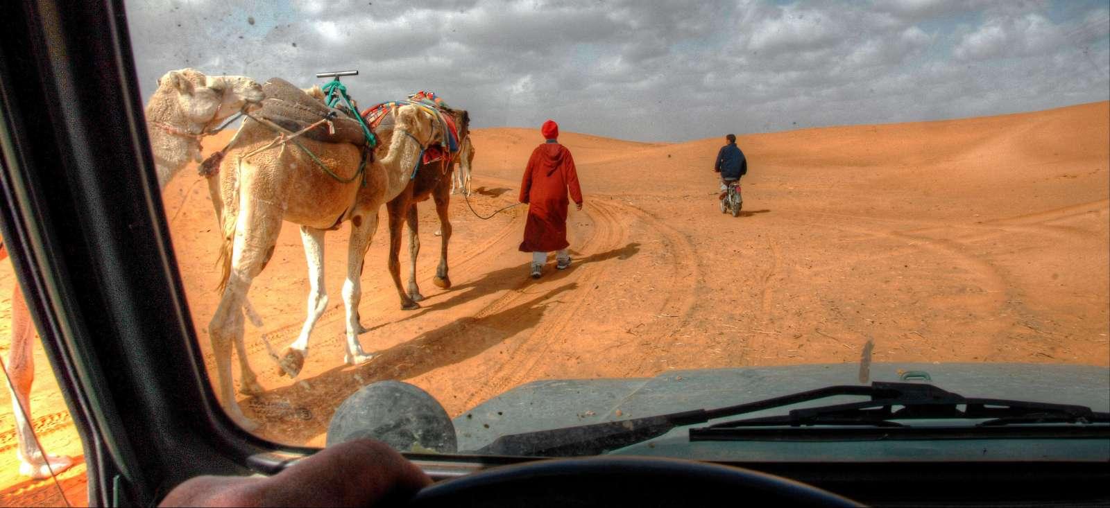 Voyage à pied : Oasis, Kasbahs et pistes marocaines