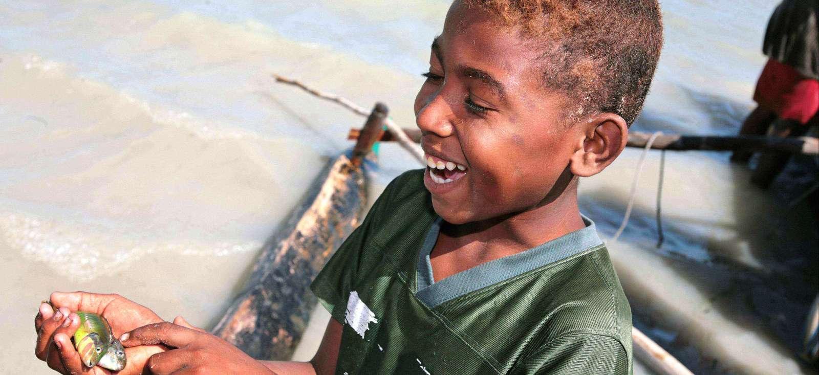 Voyage à pied : Lémuriens, coquillages & cétacés