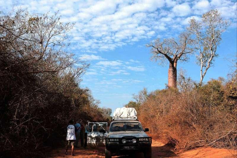 Image Pirogue, 4X4 et Baobabs !