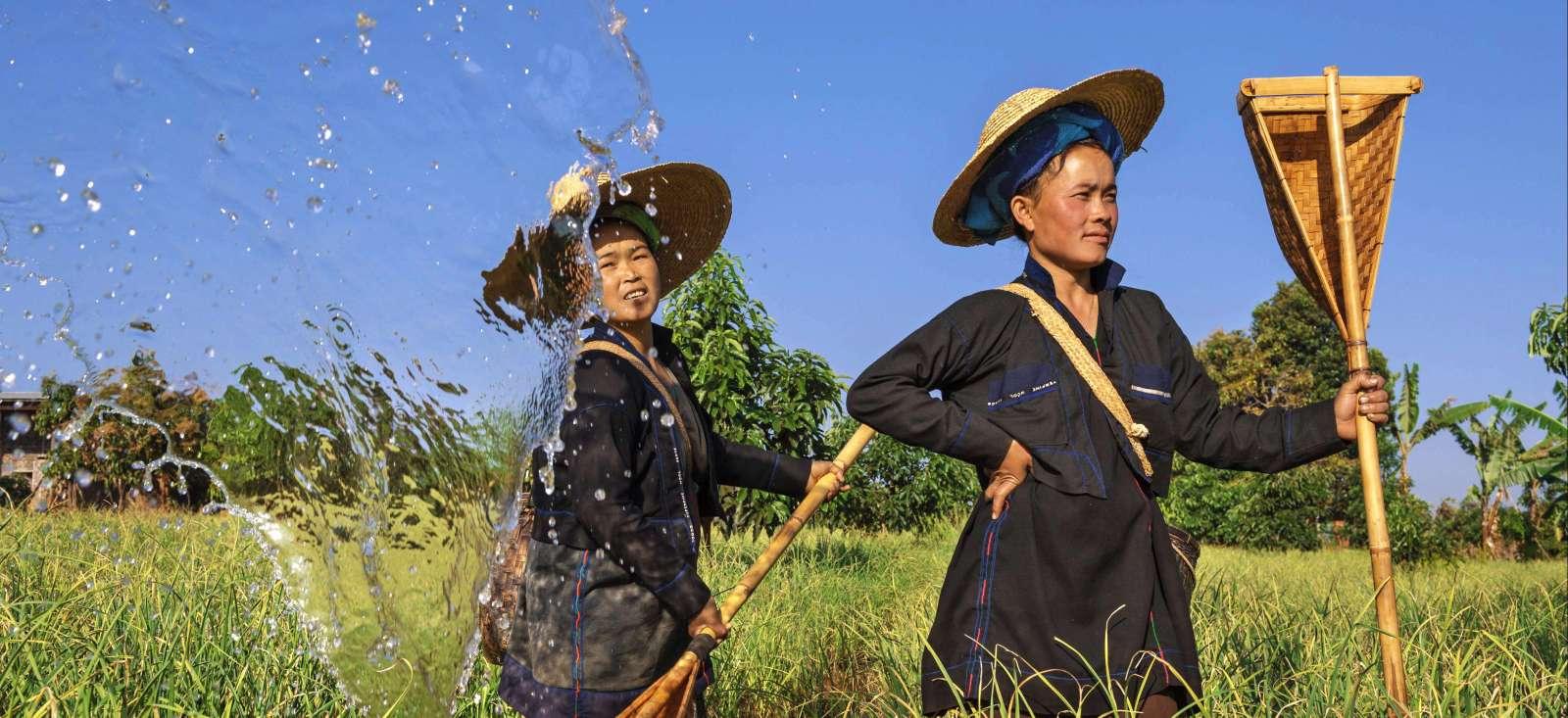 Voyage à pied : Randonnée en pays Shan +Extension Rocher d\'Or