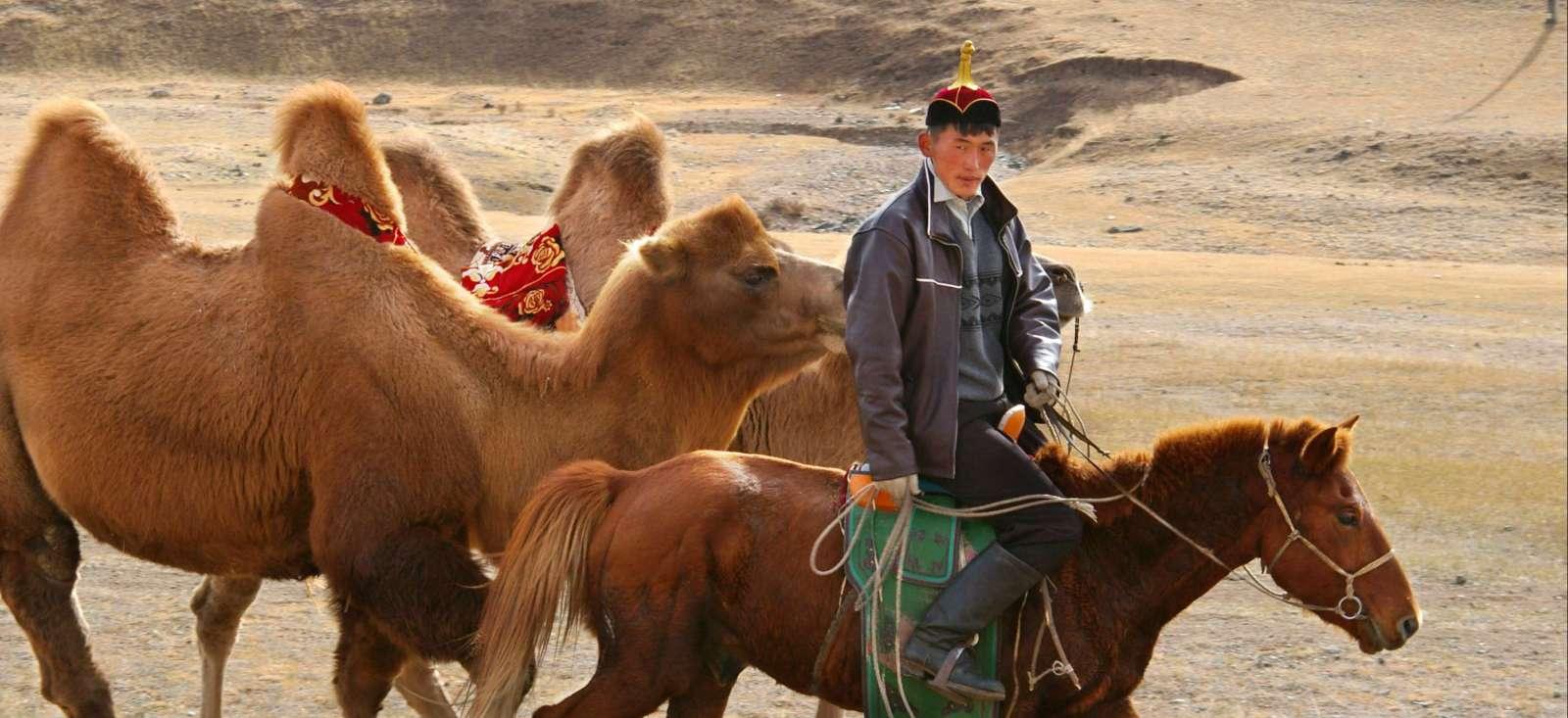 Image La Mongolie, mi-rando, mi-cheval...