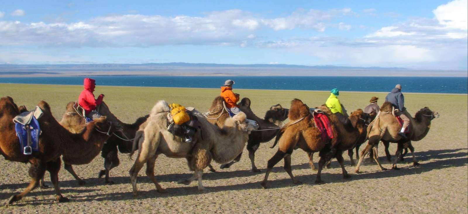 Voyage à pied : Mongolie : La route du sel