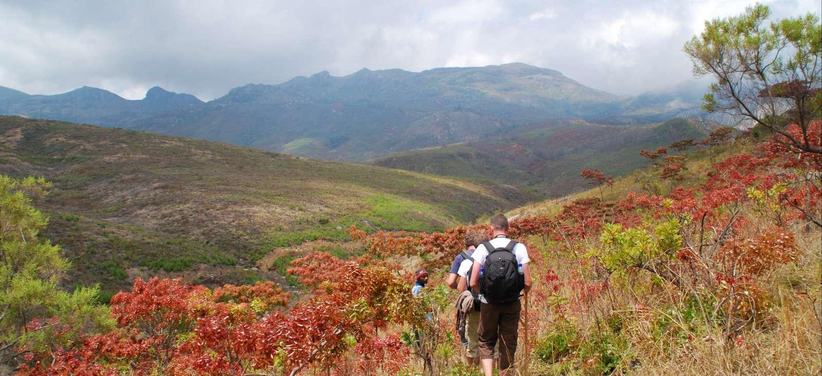 Voyage à pied Malawi : Eden Africain